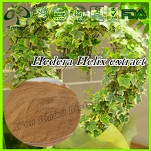 Natural Hedera Helix Extract/Ivy leaf extract 10% Hederacoside C