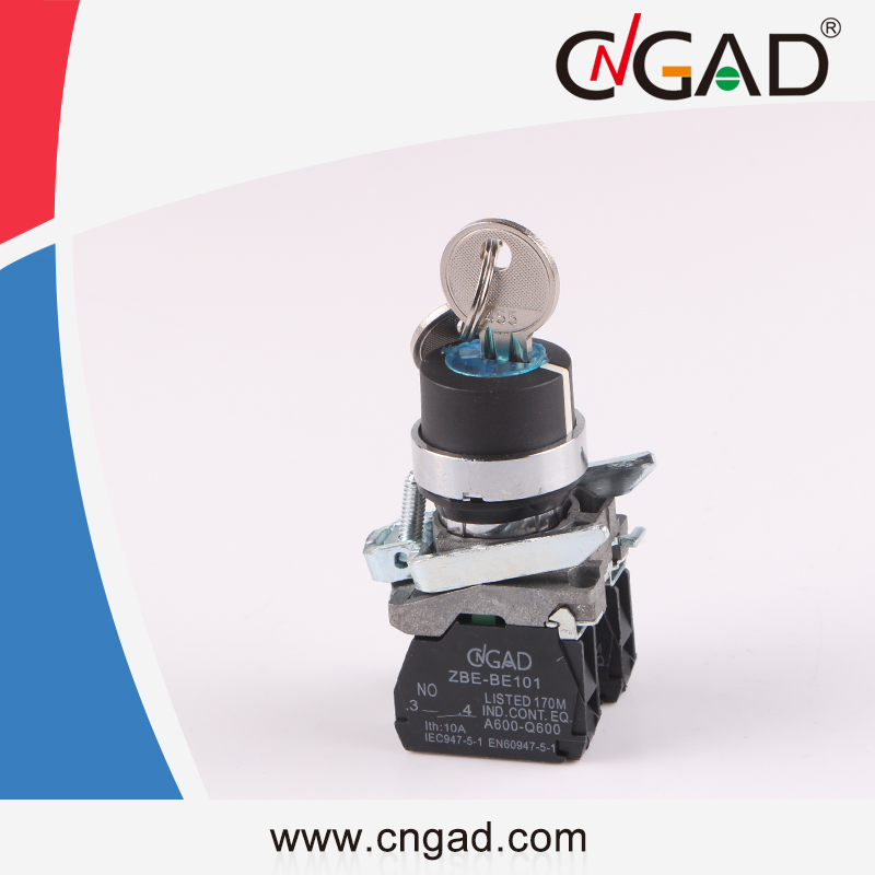 XB4-BG25 CNGAD 2-position Key push button switch
