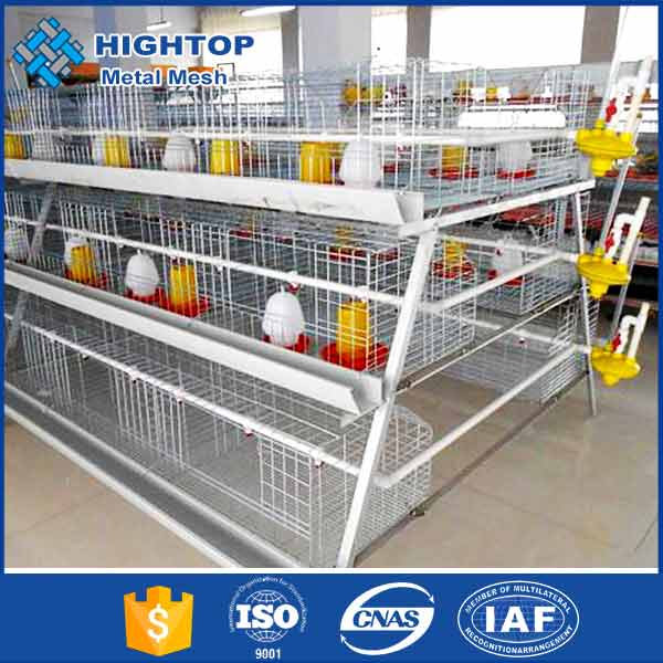 High quality 3 tiers battery cages for layers in ghana farm