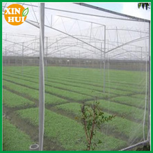 Crop Cover Plant insect mesh agriculture russia insect net