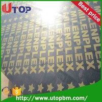 Moderate price 18mm 21mm film faced shuttering plywood pehnolic board for sale