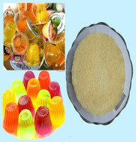 halal gelatin as yogurt ingredients/animal edible glue/cow bone gelatin powder