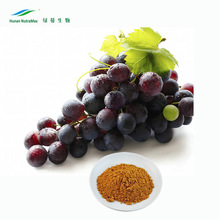 Pure Natural Grape Seed Extract,Pure Grape Seed Extract Powder,Grape Seed Plant Extract