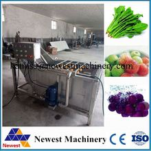 1000kg/h air bubbles washing line/apple strawberry washer machine/air bubbles cleaning machine