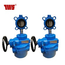 EPDM Linned PN16 ductile iron Electric Wafer Butterfly Valve