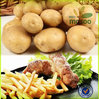 wholesale Chinese Fresh Potatoes in bulk, fresh vegetables, good quality