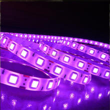 Electric smd 5050 5m 300leds 60led/m 12v 14.4w dmx rgb led strip light big tube Multi Color Led Light With Remote Controller