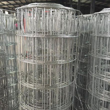 High quality PVC coated welded wire mesh fence / hot dipped galvanized welded wire mesh