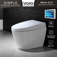 Automatic switch Massage automatic flushing electric toilet