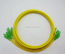 12 Core SC/APC-SC/APC Fiber Patch Cord with Optical Fiber Connectors