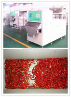 Color Sorter for Red Pepper/Chili CCD Color sorting machine Pepper processing machine