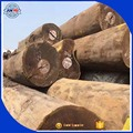 2018 New high quality Teak logs