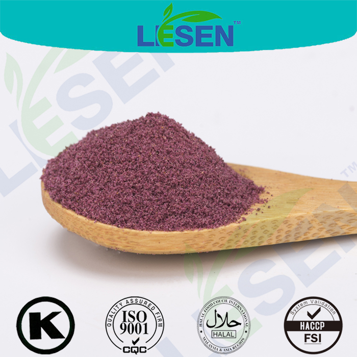 Quality Assured Blueberry FD Powder, Blueberry Fruit FD Powder, Blue Berry FD Powder