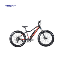 Manufacturer best price top rank green power pit electric offroad bike
