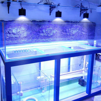 Shenzhen Factory supplier artificial coral reef aquarium for nano tank