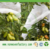 Hot export product pp spunbond nonwoven fabric for crop protection