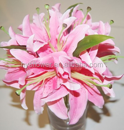 Alibaba china oriental lily flower wholesale bulk quantity