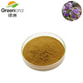 100% Natural Alfalfa Extract Powder 40% Saponins