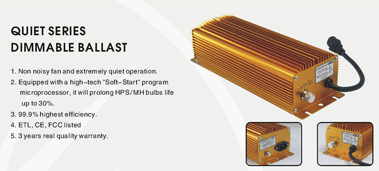 Promotional top quality ballast 600 w