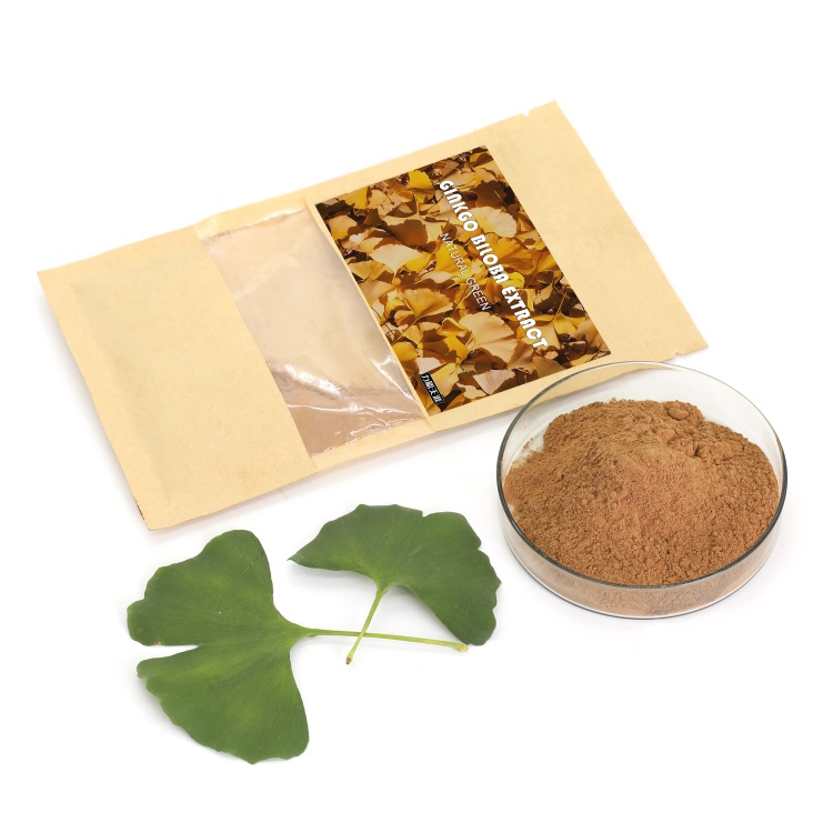 All export products natrual plant ginkgo biloba extract herb seeds