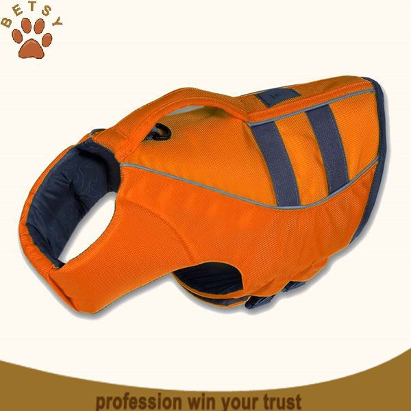 Dog Life Jackets & Water Safety