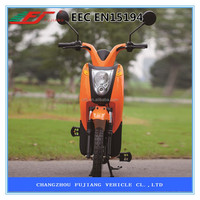 2015 Hot sell electric cargo bike CE EN15194 (FHTZ-F1)
