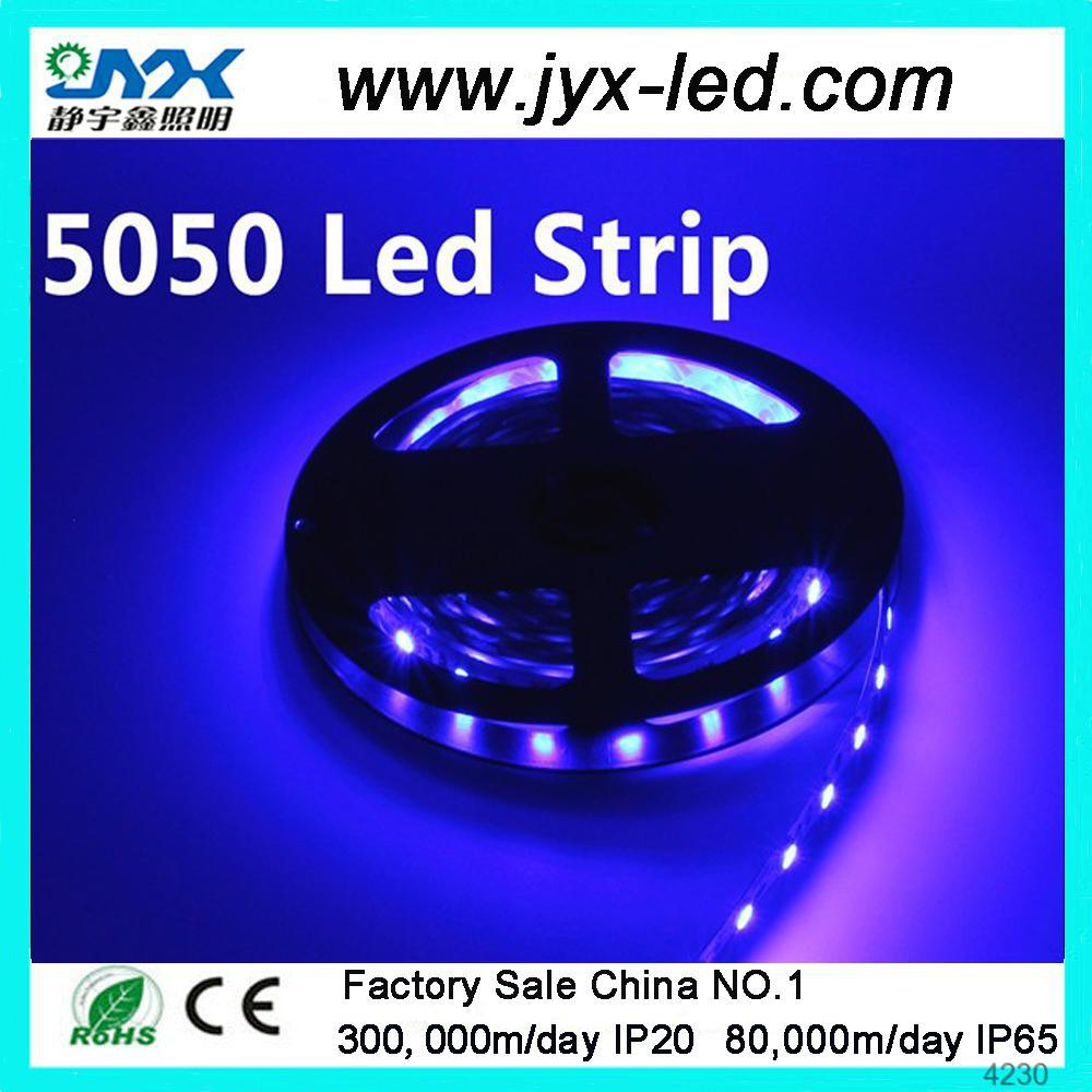 Waterproof Magic LED strip 5050 SMD LED strip 30 /meter Professional in Producing Factory direct selling