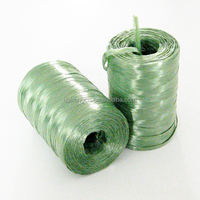 400 meters PP raffia string 100% good quality PP garden packing RAFFIA