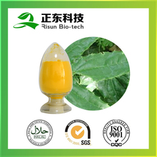Healthy functional plant extract 98% Icariin Light yellow fine powder Epimedium Extract