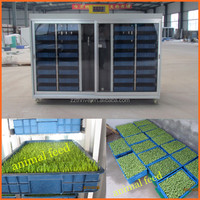 Long time working hydroponic cow/horse/sheep feeding system