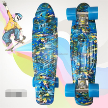 plastic retro cruiser skateboard for outdoor sports
