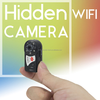 Vitevision Micro ONVIF P2P low cost wireless hidden mini IP wifi camera