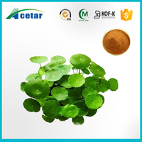 acetar Golden supplier gotu kola extract export to canada