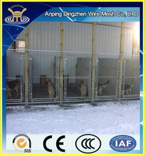 5x5 fence dog kennels indoor /6x10x6 dog kennels