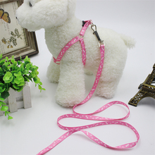 Printing polyester traction belt pet leash strap for small animals