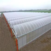 Multi-Span PE film Garden Vegetables Greenhouse
