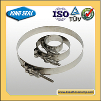 heavy duty rated T bolt hose clamp with high strength heat resistance