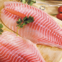 China organic frozen tilapia fillets wholesale price