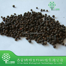 100% pure natural Black Pepper Extract Powder 98% Piperine