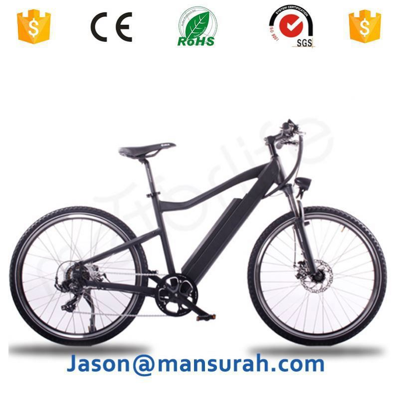 electric bicycle/OEM brand EN15194 36v 250w electric bicycle, spain bicicleta electrica