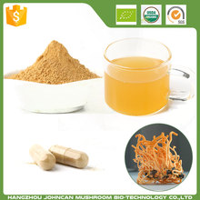 Cheap HOT SALE Cordyceps militaris Powder