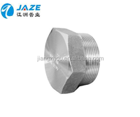 Stainless Steel pipe hex Plug