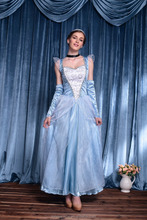 Deluxe edition custom made princess dress anime cosplay costume cheap fancy elegant princess dress for party