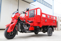 TJ200ZH three wheel large cargo motorcycle
