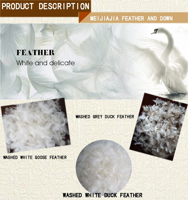 Bulk cheap washed white duck or goose feathers for sale