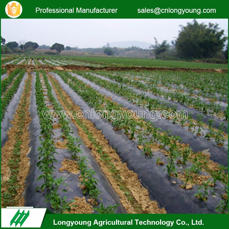Hot selling durable custom prevent weeds agricultural mulch film