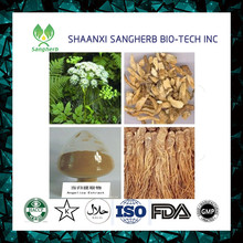 Hot sale and free sample Angelica root extract Dahurian Angelica Root P.E Angelica sinensis extract 10:1