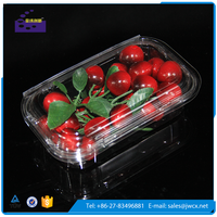 Disposable Plastic blister clamshell fruits packaging box