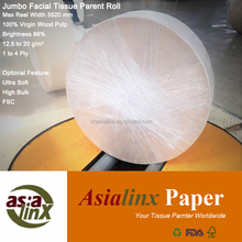 Top Quality Facial Tissue Jumbo Mother Roll, Virgin Wood Pulp
