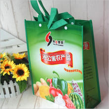 Full Printing Lovely pictures printing pp promotional non-woven shopping bag